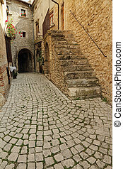 beautiful cobbled street in italian village Santo Stefano di...