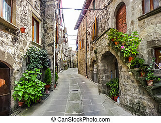 Beautiful alleyway in the historic town of Vitorchiano,...