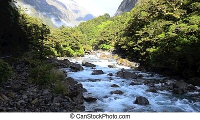 River in Fiordland NZL - Landscape view of Fiordland,...