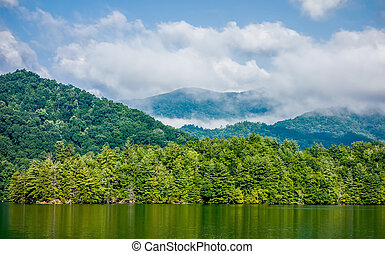 lake santeetlah scenery in great smoky mountains
