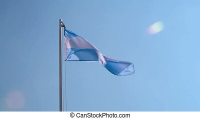 Argentina flag in front of blue sky