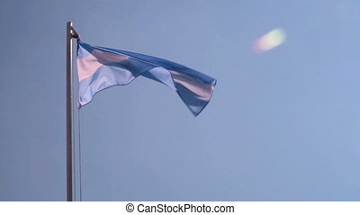 Argentina flag in slow motion with blue sky