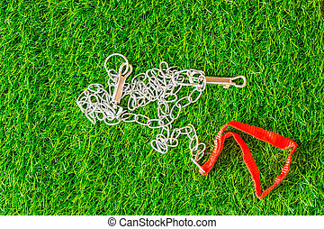 chain interpreter dogs on green grass texture background eco...
