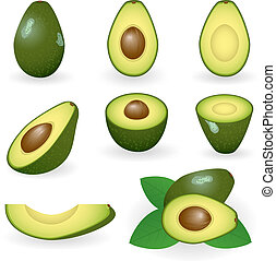 Avocado - Vector illustration of avocado