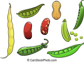 Cartoon fresh legumes and vegetables with peas in a pod,...