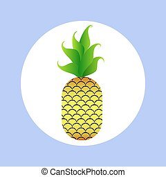 pineapple in circle