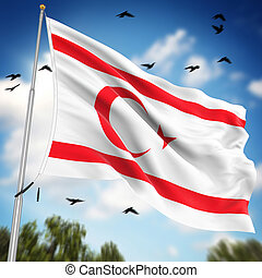 Flag of the Turkish Republic of Northern Cyprus , This is a...