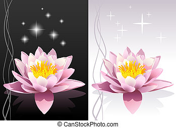 Vector lotus flower - Detailed vector fresh lotus flower...