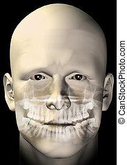 male figure dental scan - Male figure portrait with dental...
