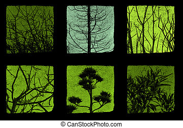 trees and plants - Trees and plants details abstract nature...