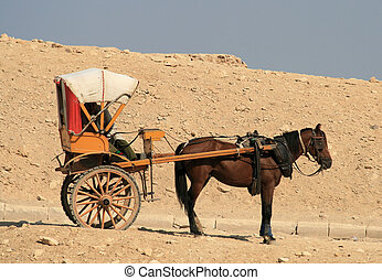 Horse and cart 2