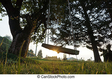 Swingset - An old swing on an apple tree in the country...