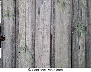 Fragment of old wooden fence - Fragment of an old wooden...