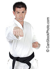 Martial arts punch - Black belt karate expert with fight...