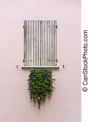 window planter - window with flower box full of flowers...