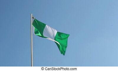 Nigerian flag in front of blue sky