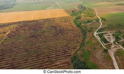 Agricultural Fields And Settlement At Dull Day - Aerial...