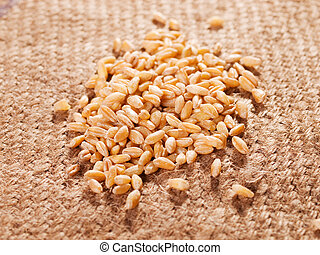 Wheat - Raw wheet on cloth
