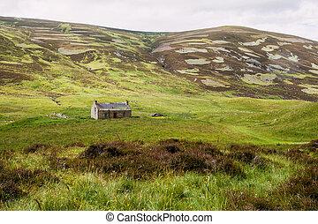 Typische Schottische Landschaft in den Highlands