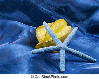 Starfruit and Starfish