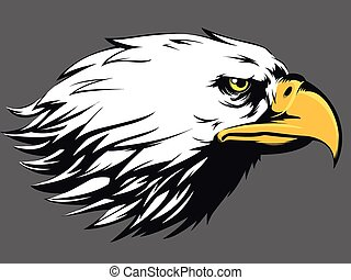 Eagle Face Vector - Side View Cartoon - A vector image of a...
