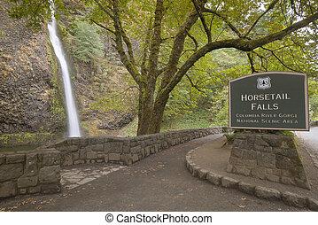 Horsetail Falls Columbia River Gorge Oregon.