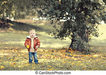 Little cute child with yellow a leaf of the tree in the...