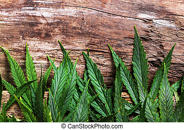 Cannabis on a wooden background