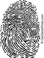 Fingerprint - Vector black isolated fingerprint on white...