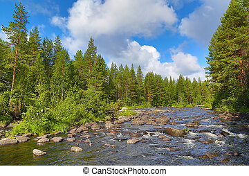 river in Karelia - landscape with river and forest in...