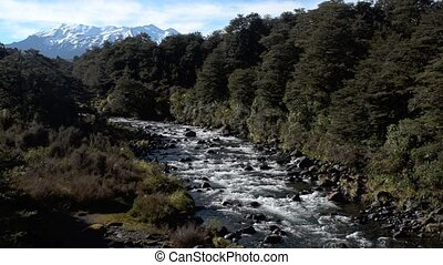 Mahuia River in Tongariro National Park New Zealand -...