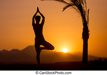 Yoga Tree Pose in tropical location - Back view of young...