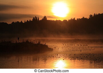 Burnaby Lake Sunrise - A beautiful sunrise over Burnaby...