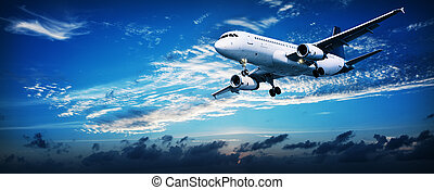 Jet in a sunset sky - Panoramic composition of a flying jet...