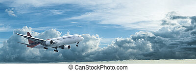 Jet in flight. Panoramic composition in high resolution.