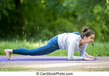 parque, lagarto, postura,  yoga, callejón
