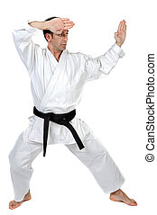 Martial arts stance - Black belt karate expert with fight...