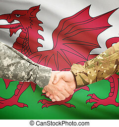 Men in uniform shaking hands with flag on background - Wales...