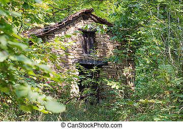 old abandoned cottage in the woods