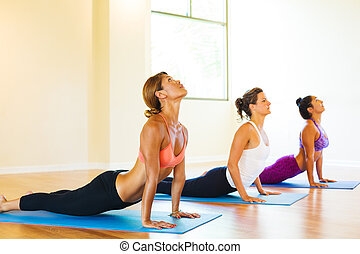 Yoga Class - Group of Young People Relaxing Practicing Yoga,...
