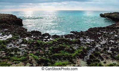 Ocean's waves breaking on the reef