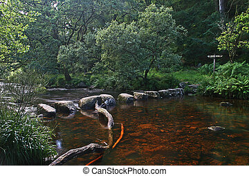 Stepping stones near Badgers Holt Dartmoor - This old set of...