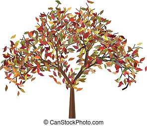 Tree with Autumn Leafage - Orange, red and yellow colors...