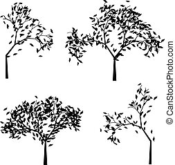 Trees Silhouettes