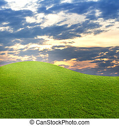green grass with  sunset sky