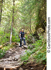 Man hiker on a marked trail through the forest - Caucasian...