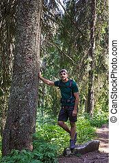 Hiker man in a secular fir firest - Caucasian man hiker...