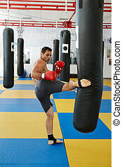 Kickbox fighter training with the punch bag - Kickbox...