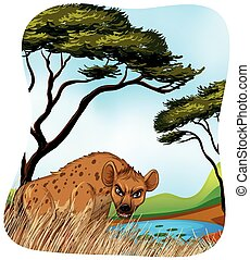 Brown hyena in nature illustration