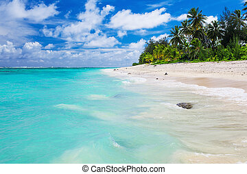 Tropical beach with rocks, palm trees and amazing water on Cook Islands